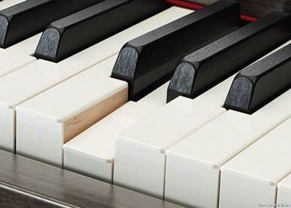 bàn phím ngà voi và gỗ mun tổng hợp