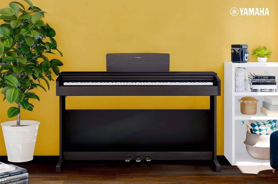 Piano điện Yamaha YDB144
