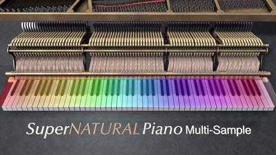 Piano điện Roland Hp503 SuperNATURAL Piano Sound