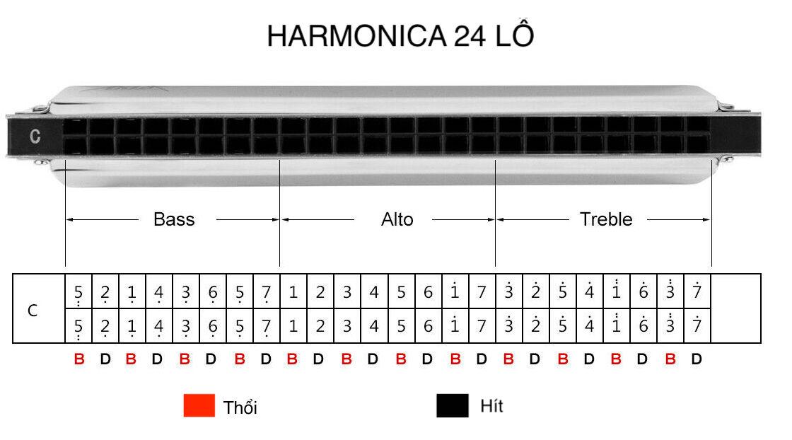 harmonica cho người bắt đầu chơi