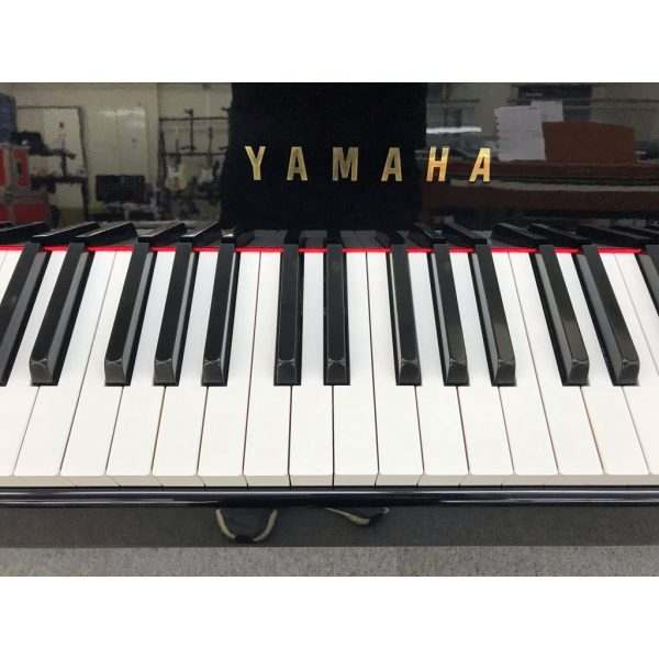 Yamaha DGP-5
