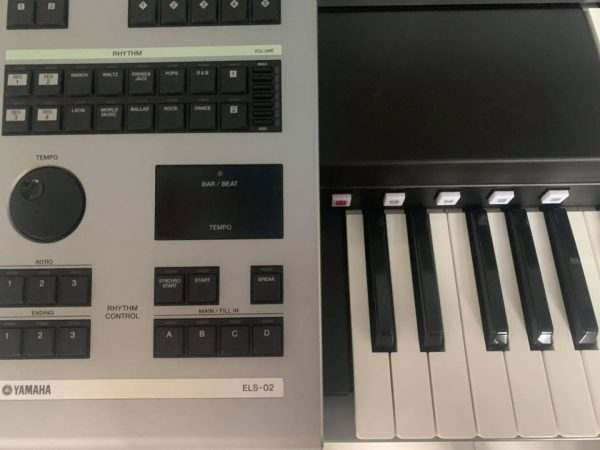 Yamaha ELS-02C