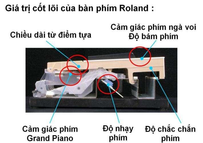 piano-dien-roland-hp-307-3