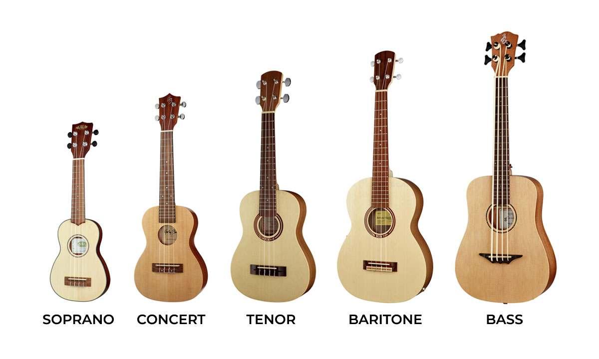 top-3-cay-dan-ukulele-tot-gia-re-danh-cho-nguoi-moi-bat-dau-4