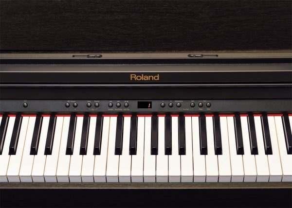 Roland RP401R