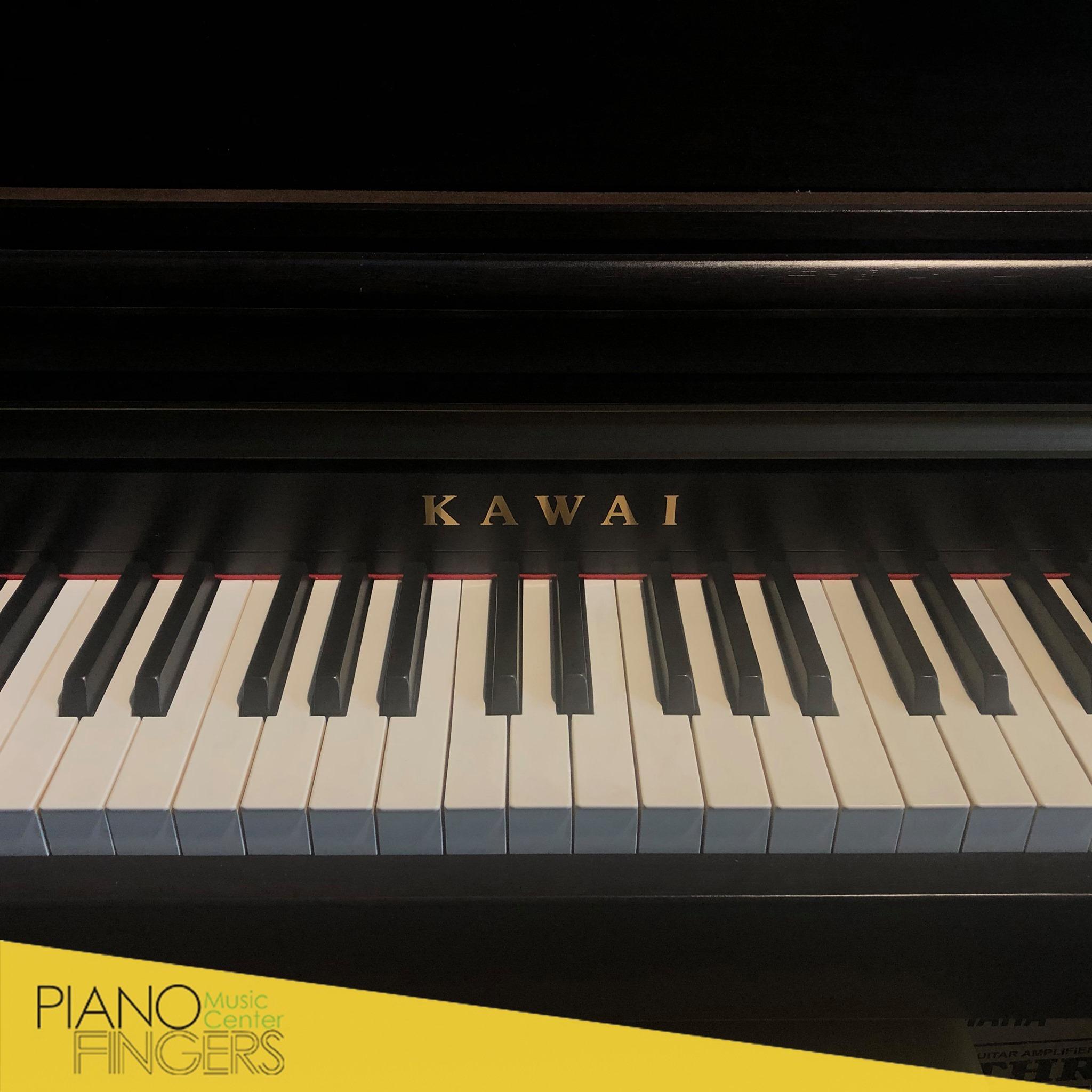 hướng dẫn sử dụng kawai ca65