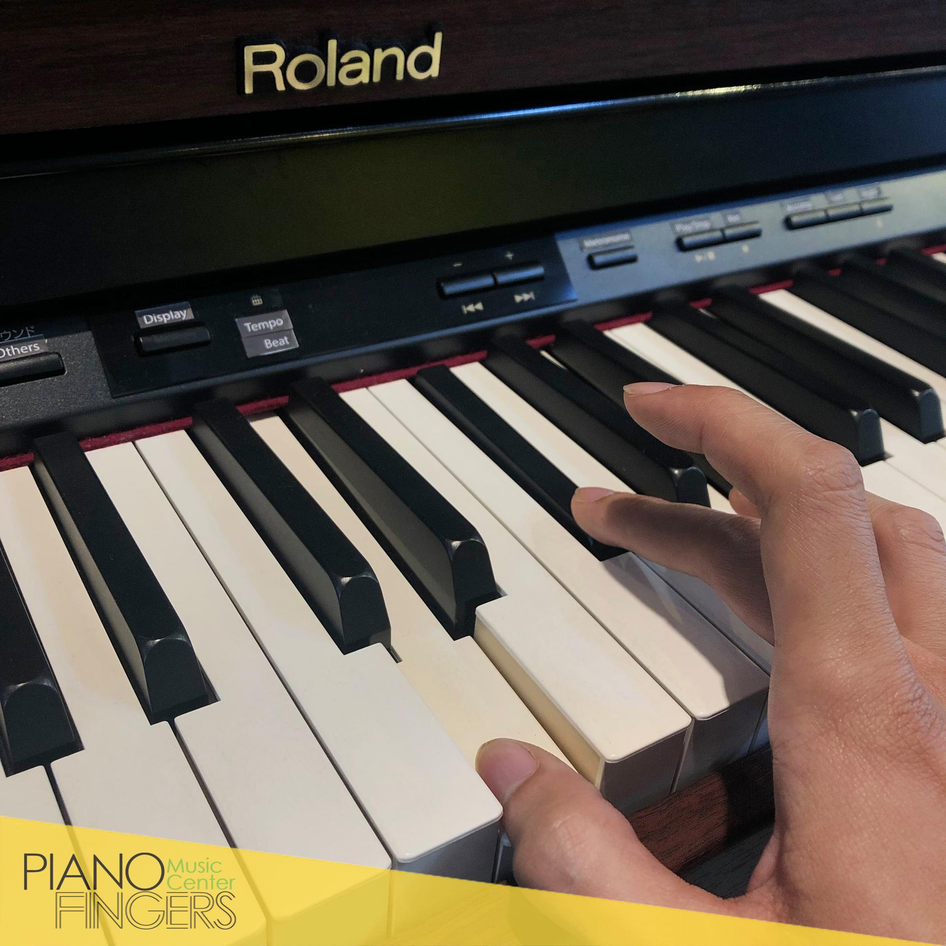 Hướng dẫn sử dụng Roland HP-305 Manual