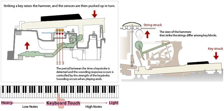 Đàn Piano Điện Kawai CA95
