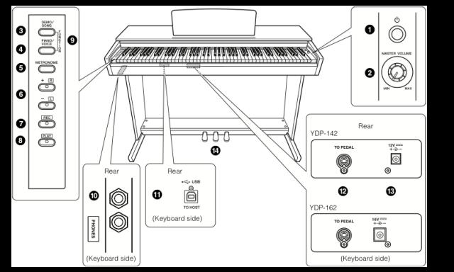 Đàn Piano Điện Yamaha Arius YDP-161