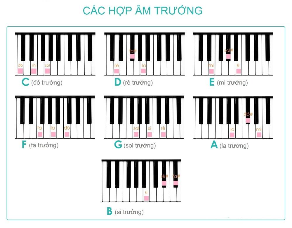 hop-am-la-gi-nhung-hop-am-co-ban-tren-dan-piano-1