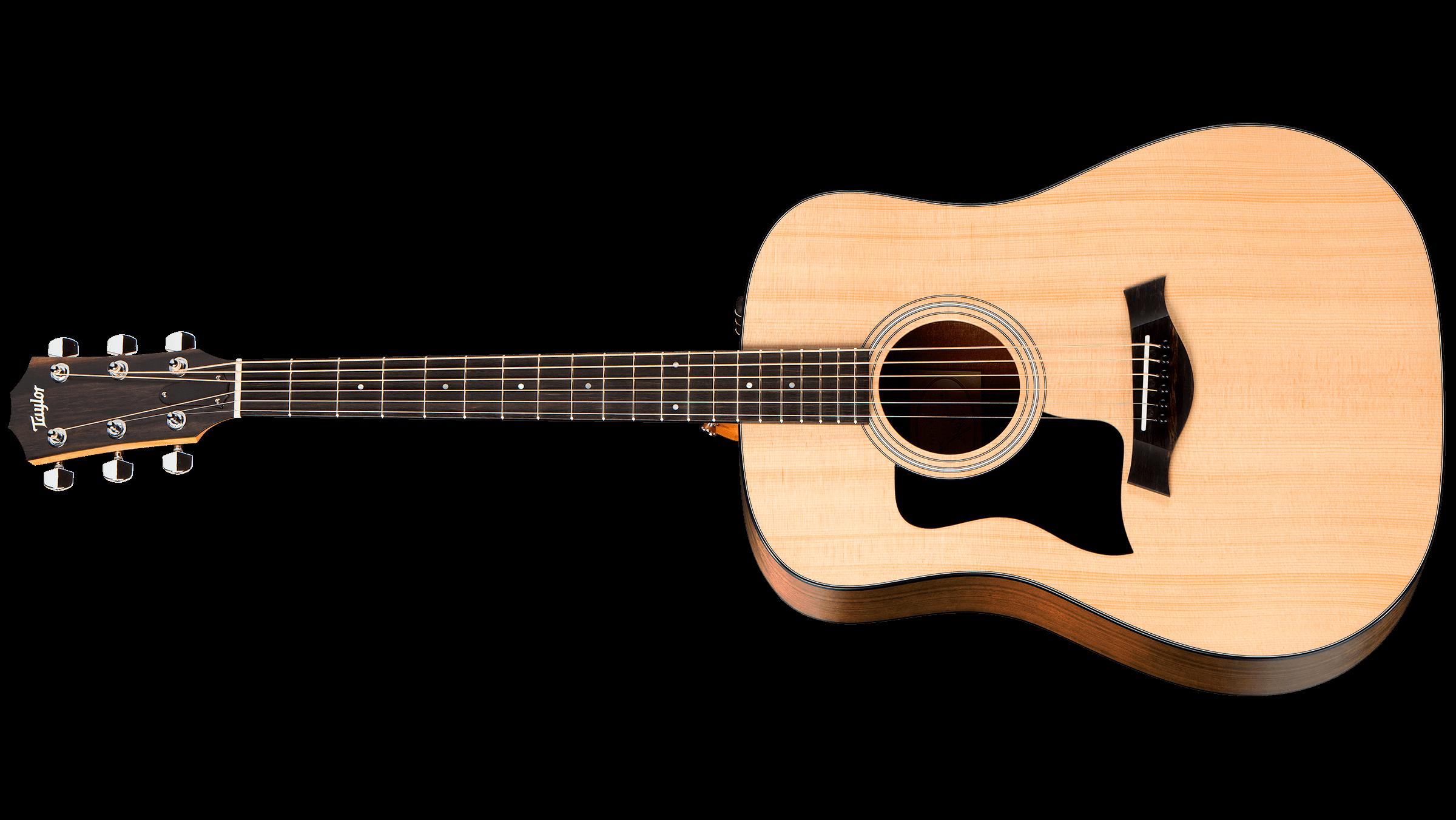 dan-guitar-taylor-110e