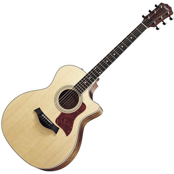 dan guitar taylor 414ce 3