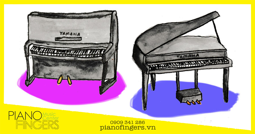 kich-thuoc-dan-piano-co